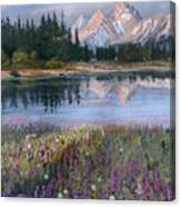 Lupines At Pilgrim Creek Canvas Print