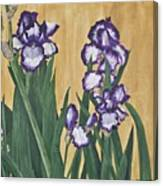 Luscious Iris Canvas Print