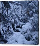 Luscious Snowfall Canvas Print