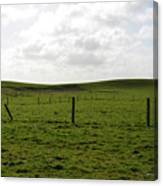 Lush Green Grass On The Cliffs Of Moher Canvas Print
