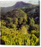 Lush Greenery While Trekking Canvas Print