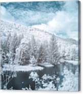 Lyman Run State Park 0376ir Canvas Print