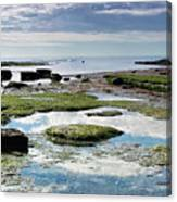 Lyme Regis Seascape 4 - October Canvas Print