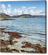 Lyme Regis Seascape 5 - October Canvas Print