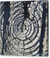 M Scored Into A Log Canvas Print