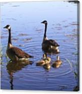 Ma N Pa Geese And All The Little Ones Canvas Print