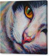 Ma-pang Canvas Print