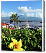 Maalaea Boat Harbor Canvas Print