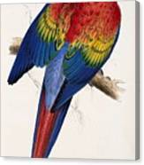 Macaw By_edward_lear Canvas Print