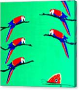 Macaw Ladder Canvas Print