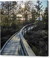 Macgregor Point Boardwalk Canvas Print