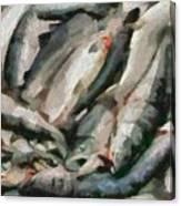 Mackerel Canvas Print