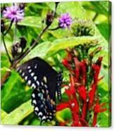 Macro Nature Canvas Print