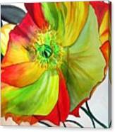 Macro Poppy Canvas Print
