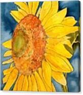 Macro Sunflower Art Canvas Print