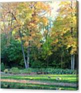 Mae Stecker Park In Shelby Township Michigan Canvas Print