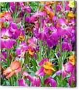 Magenta Floral Pattern Canvas Print