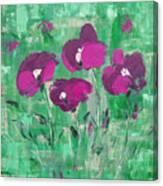 Magenta Poppies Canvas Print