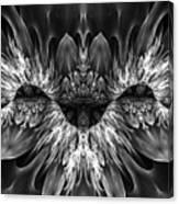 Magenta Until - Black And White 2 Canvas Print