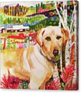 Maggie Canvas Print