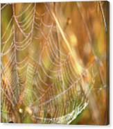 Magic In The Marsh Canvas Print