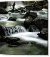 Magic Patagonia Creek Canvas Print