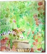 Magic Time At Craig Sole's Canvas Print