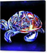 Magic Turtle Canvas Print