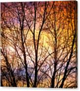 Magical Colorful Sunset Tree Silhouette Canvas Print