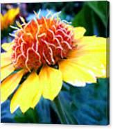 Magical Flower Canvas Print
