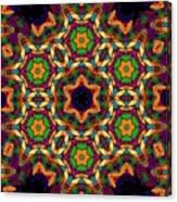 Magical Matrix  Canvas Print
