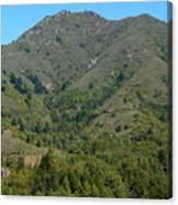Magical Mountain Tamalpais Canvas Print