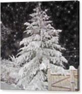 Magical Nighttime Snow Canvas Print