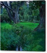 Magical Woodland Glade Canvas Print