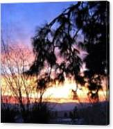 Magnificent Winter Sky Canvas Print