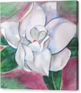 Magnolia 2 Canvas Print