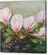 Magnolia Blossom - Painting Canvas Print