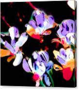 Magnolia Impressions Canvas Print