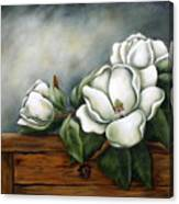 Magnolia On A Chest Canvas Print