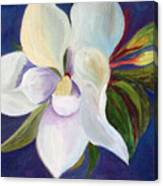 Magnolia Painting Canvas Print