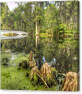 Magnolia Plantation Cypress Garden Canvas Print