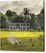 Magnolia Plantation House Canvas Print