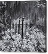 Magnolia Plantation Lightpost Canvas Print