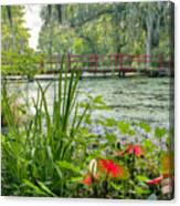 Magnolia Plantation Swamp Garden Canvas Print