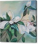 Magnolia Summer Canvas Print