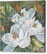Magnolias five Canvas Print