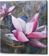 Magnolias In Shadow Canvas Print