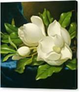 Magnolias On A Blue Velvet Cloth Canvas Print