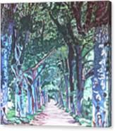 Mahogany Avenue Canvas Print
