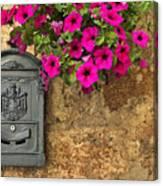 Mailbox With Petunias Canvas Print
